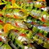 PERCH JOINTED FLUOGREEN 8cm